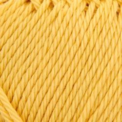 Catania 00284   mellow yellow