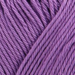 Catania 00301 | hyacinth
