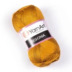 Begonia 6340