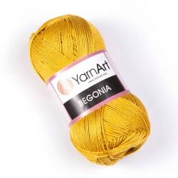 Begonia 4940